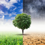 'Betrek financiële sector bij klimaatakkoord', stelt Triodos (NVB wil wel)